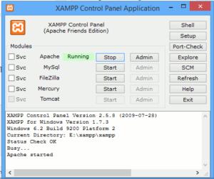 Nischenseiten ohne CMS - XAMPP Control Center
