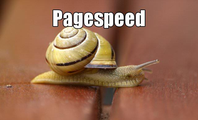 Pagespeed Nischenseiten