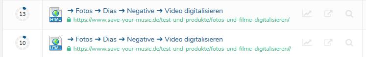 Ryte URL-Duplikate